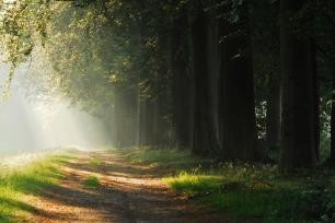 Wandel paden renswoude